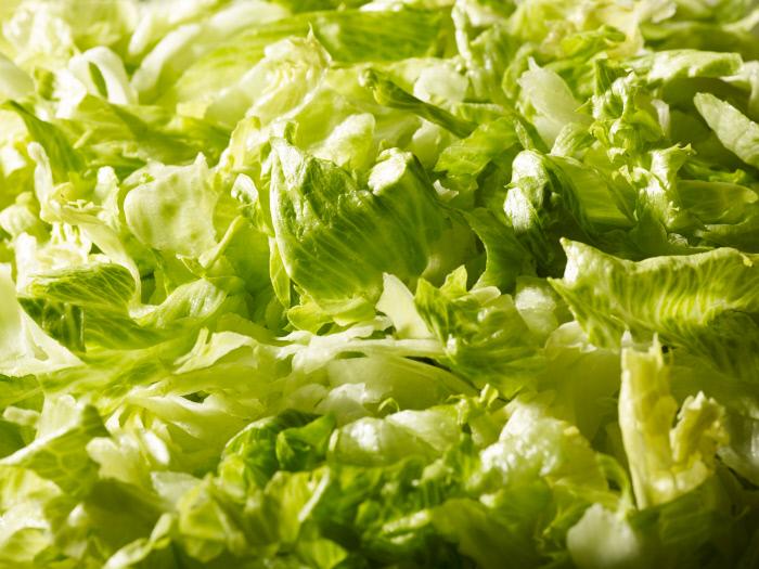 La salade Iceberg image