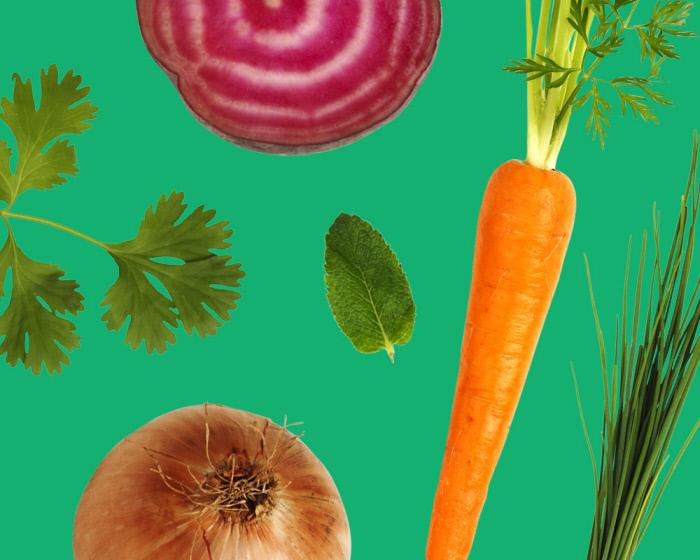june_2019_legumiz_15_vegetable_not_to_associate_in_the_garden_web_01