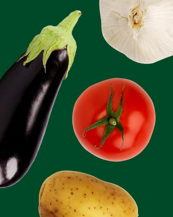 june_2019_legumiz_15_vegetable_not_to_associate_in_the_garden_web_07