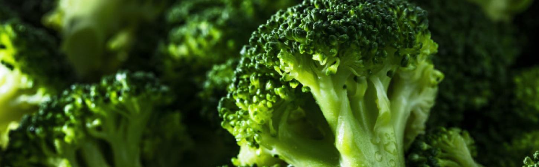 Idée recette, bien cuisiner Le brocoli | Bonduelle